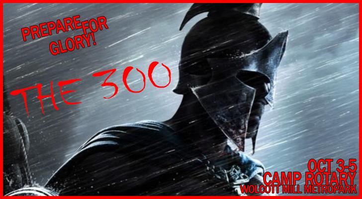 300image